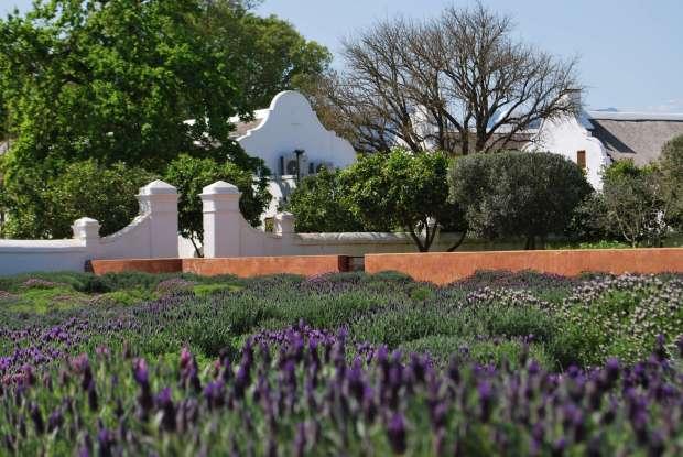 Jardin, Babylonstoren, Afrique du Sud