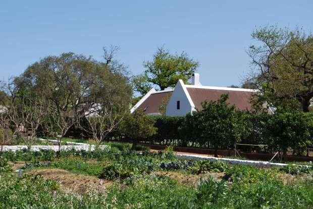 Potager, Babylonstoren, Afrique du Sud