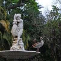 Fontaine company garden, Cape Town, Afrique du Sud