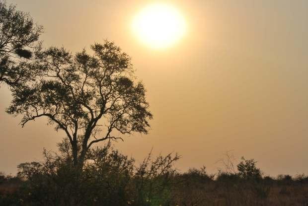 Coucher de soleil, Parc Kruger, Afrique du Sud