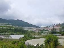 Serres, Cameron Highlands, Malaisie