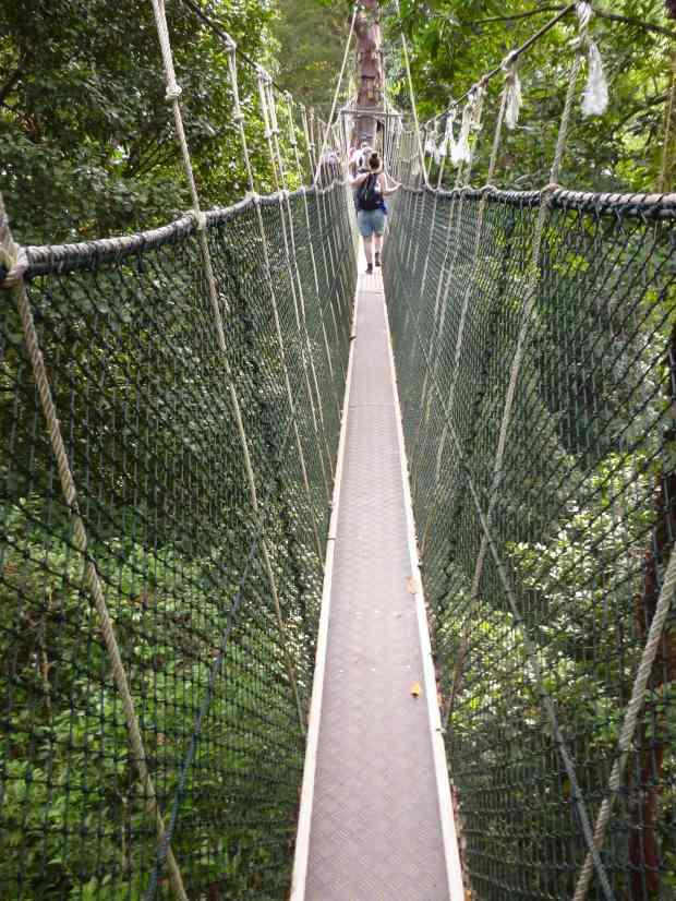 Pont suspendu, Taman Negara, Malaisie