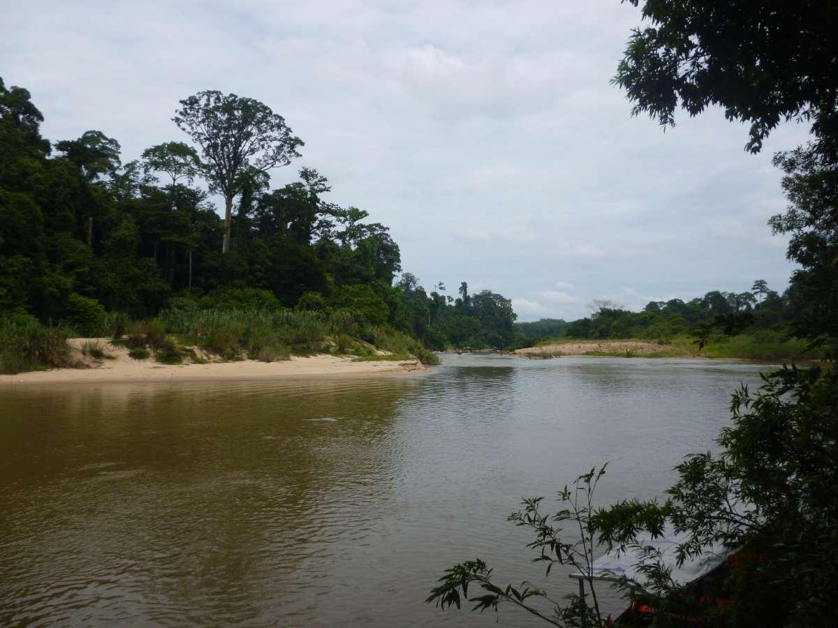 Rivière, Taman Negara, Malaisie