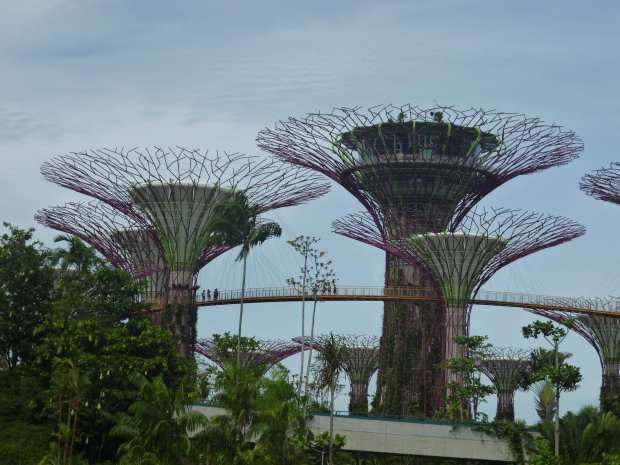 Tours des Gardens by the Bay, Singapour