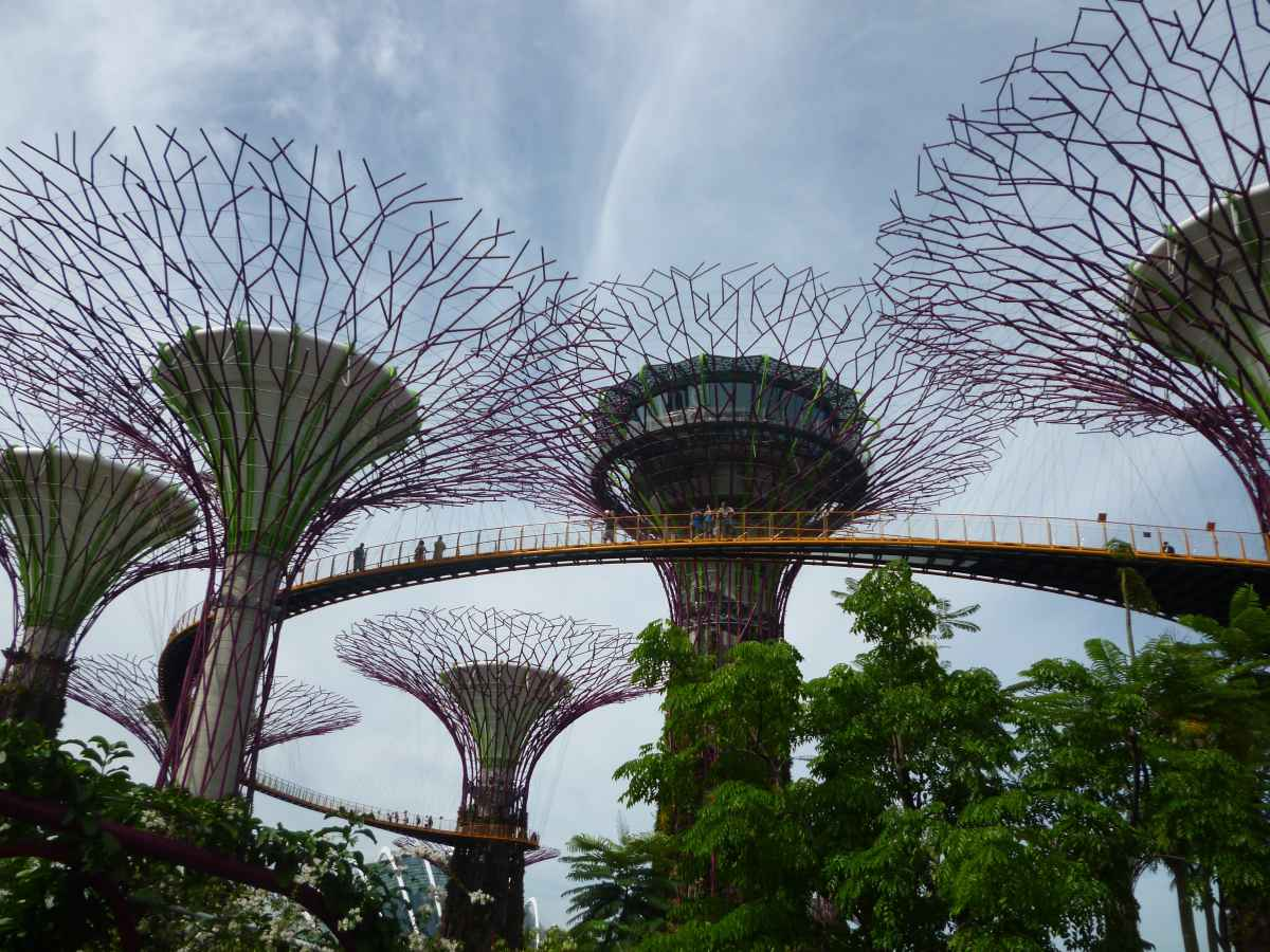 Towers of Gardens by the Bay, Singapour