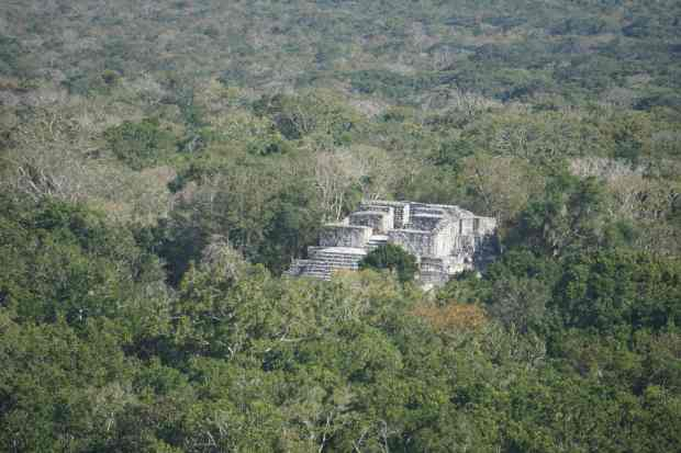Point de vue, Calakmul, Mexique