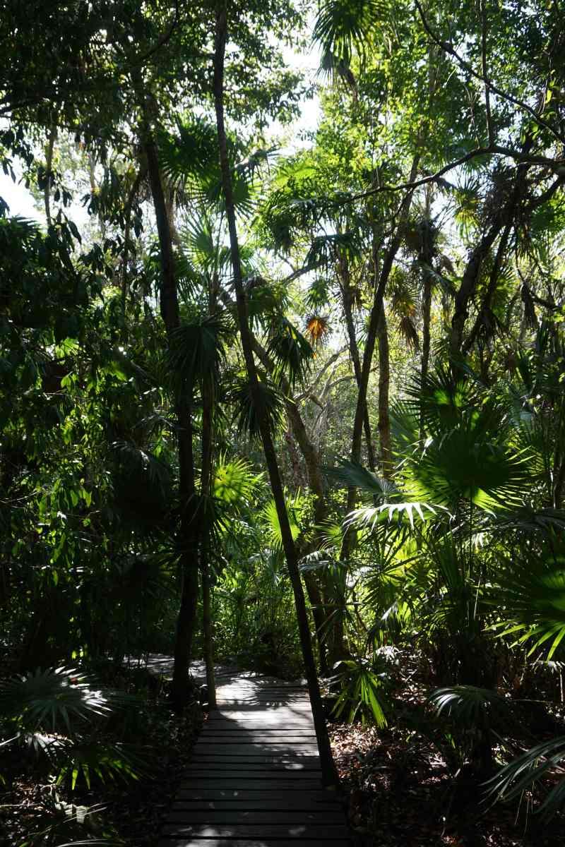Biosphère de Sian Ka'an, Mexique