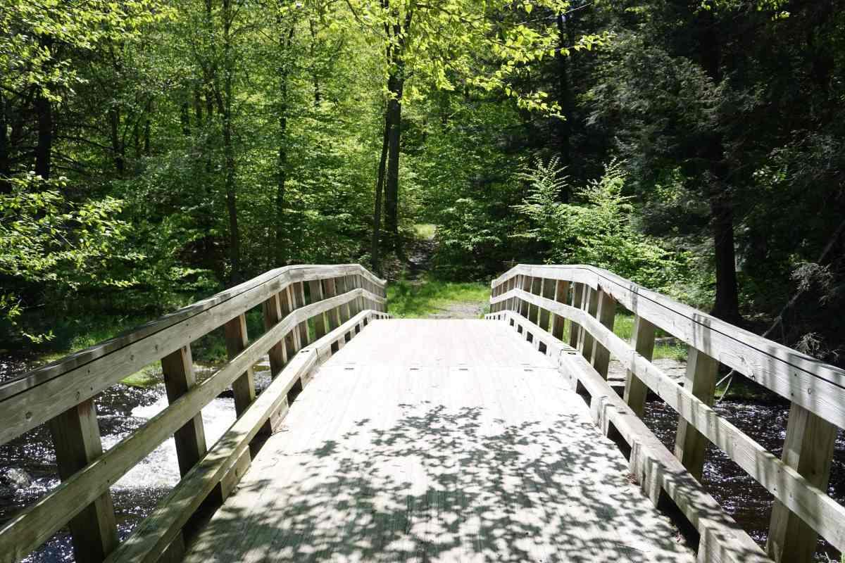 Bridge Little Falls trail, Pocono Mountain, Pennsylvanie